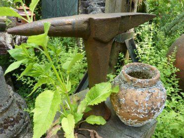 Frans aambeeld en inktvispot