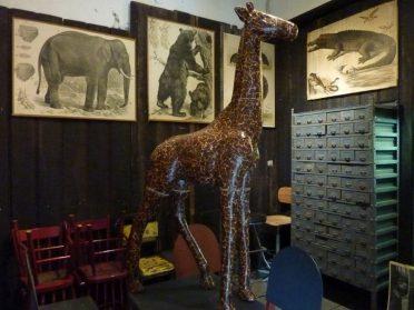 Giraffe papier-maché en schoolplaten
