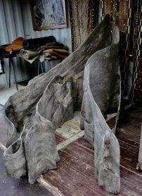 plankwortels uit indonesie