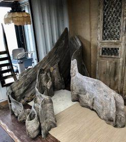 Oude plankwortels uit Indonesie